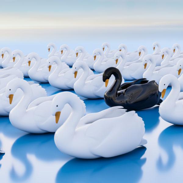Risikomanagement und Firmenverkauf